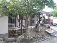 2010-07-05_18